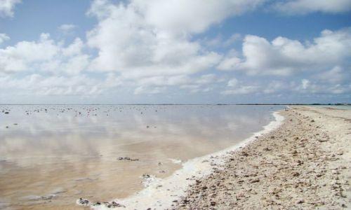 Zdjęcie WYSPY KARAIBSKIE / Bonaire / brak / słone jezioro