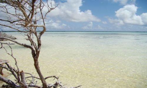 Zdjęcie WYSPY KARAIBSKIE / Bonaire / brak / Lac Bay 1