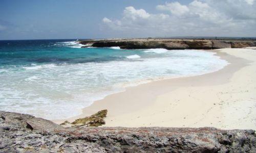 Zdjęcie WYSPY KARAIBSKIE / Bonaire / Washington Slagbaai National Park / nad brzegiem morza 4