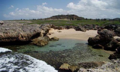 Zdjęcie WYSPY KARAIBSKIE / Bonaire / Washington Slagbaai National Park / nad brzegiem morza 6