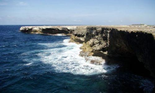 Zdjęcie WYSPY KARAIBSKIE / Bonaire / Washington Slagbaai National Park / nad brzegiem morza 7