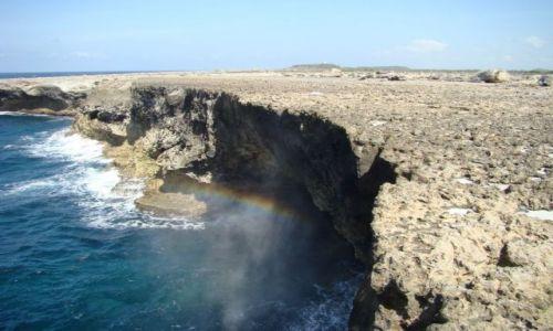 Zdjęcie WYSPY KARAIBSKIE / Bonaire / Washington Slagbaai National Park / nad brzegiem morza 8