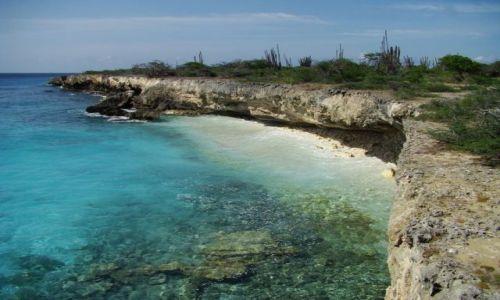 Zdjęcie WYSPY KARAIBSKIE / Bonaire / Washington Slagbaai National Park / nad brzegiem morza 9