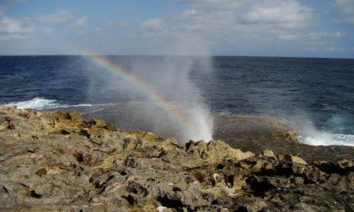 Zdjęcie WYSPY KARAIBSKIE / Curacao / brak / nad brzegiem morza 12
