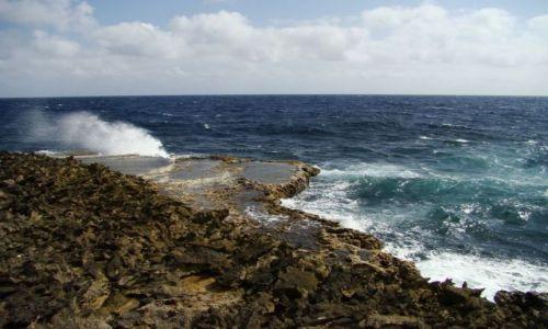 Zdjęcie WYSPY KARAIBSKIE / Curacao / brak / nad brzegiem morza 13