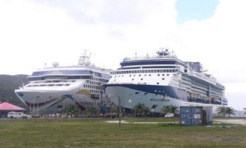 Zdjecie WYSPY KARAIBSKIE / Amerykańskie Wyspy Dziewicze / St. Thomas ,Charlotte Amalie / Giganty na łące