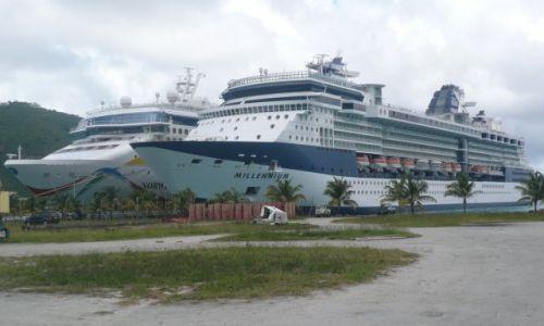 Zdjecie WYSPY KARAIBSKIE / US VI / St. Thomas ,Charlotte Amalie / Giganty na łące 2