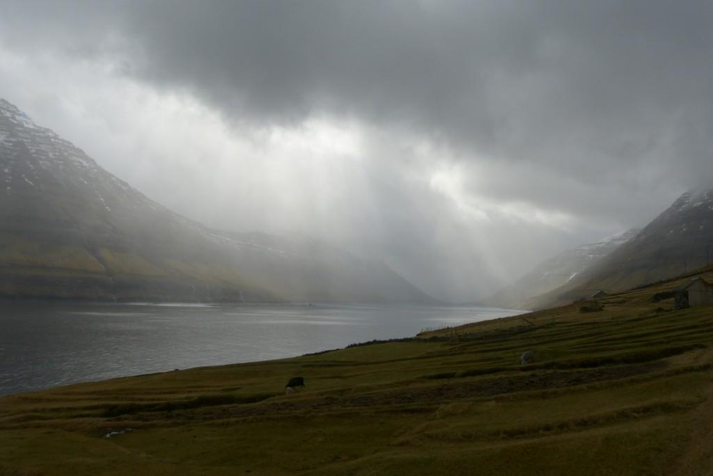 Zdjęcia: Hvannasund, Vidoy, Deszcz, WYSPY OWCZE