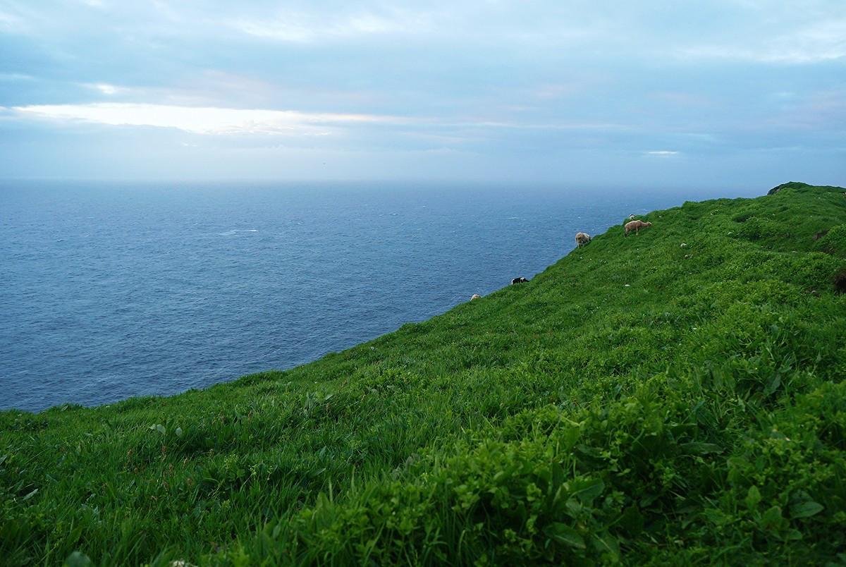 Zdjęcia: Mykineshólmur, Mykines, Około północy, WYSPY OWCZE