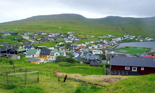 WYSPY OWCZE / Wyspa Vágar / Sørvágur / Krajobraz z koniem
