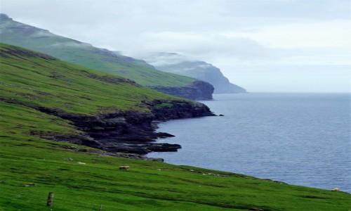 Zdjęcie WYSPY OWCZE / Wyspa Kalsoy / Trøllanes  / Brzegiem wyspy
