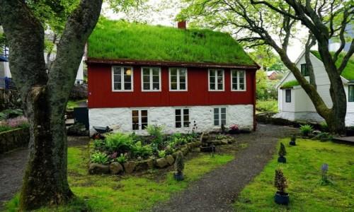 Zdjecie WYSPY OWCZE / Wyspa Streymoy / Thorshavn  / Domek z ogródkiem