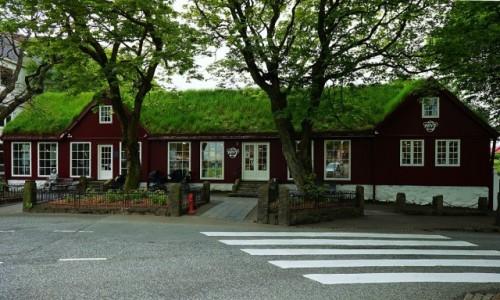 Zdjecie WYSPY OWCZE / Wyspa Streymoy / Thorshavn  / Pod zielonym dachem