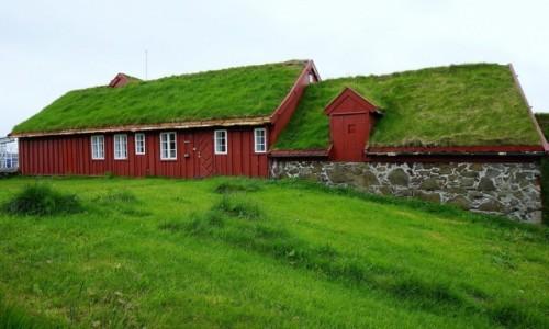 Zdjęcie WYSPY OWCZE / Wyspa Streymoy / Thorshavn  / W zgodzie z naturą
