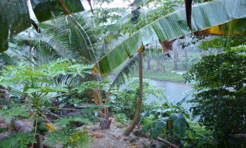 Zdjecie WYSPY SALOMONA / Pacyfik, Oceania / Guadalcanal / Ulewa na Salomonach...