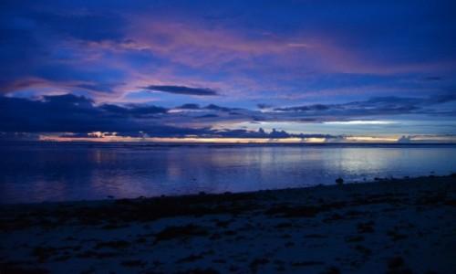 Zdjęcie WYSPY SALOMONA / Malaita / Auki / Kicz się pojawił nad wyspą