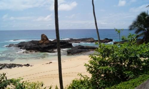 Zdjecie WYSPY ŚWIĘTEGO TOMASZA i KSIĄŻĘCA / Sao Tome / Ilhas Das Rolas / Ślady Piętaszka?