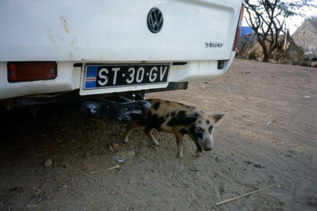 Zdjęcia: Pedra Badejo, Santiago, parking strzeżony, Wyspy Zielonego Przylądka