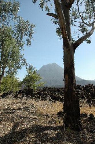 Zdjęcia: Fogo, park na Fogo, Wyspy Zielonego Przylądka