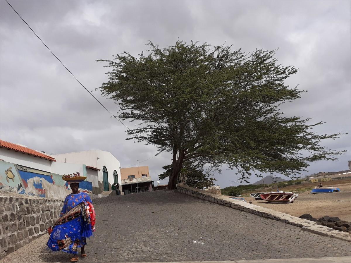 Zdjęcia: SANTA MARIA, SAL, CABO VERDE, WYSPY ZIELONEGO PRZYLĄDKA