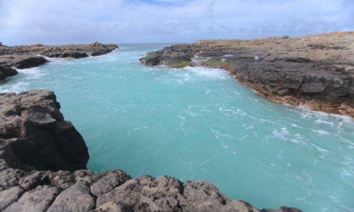 Zdjecie WYSPY ZIELONEGO PRZYLĄDKA / Wyspa Sal / Palmeira / Woda