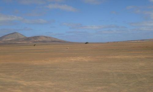 Zdjecie Wyspy Zielonego Przylądka / Sali / pustynia / Widok fatamorgany na pustyni