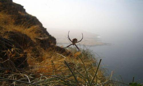 Zdjęcie Wyspy Zielonego Przylądka / Santiago / Tarrafal / Trekking na Santiago