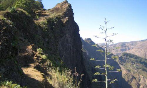 Zdjęcie Wyspy Zielonego Przylądka / Santo Antao / Santo Antao / pokrętne drogi wioda do raju