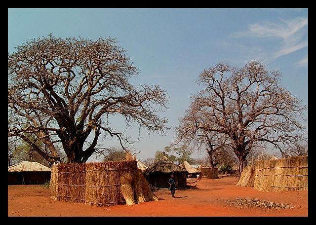Zdjęcia: wioska Mukuni, okolice Livingstone, Wioska, ZAMBIA