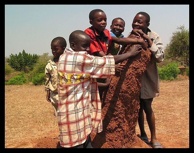 Zdjęcia: Nyimba, SE Zambia, Chłopcy i termitiera, ZAMBIA