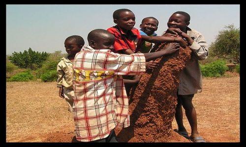Zdjecie ZAMBIA / SE Zambia / Nyimba / Chłopcy i termitiera