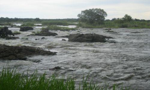 Zdjęcie ZAMBIA / Zambia / Zambia / Rzeka Zambezi (przed wodospadami Wiktorii)