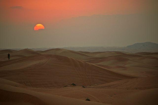 Zdjęcia: PUSTYNIA LAHBAB , Zatoka Perska, ...., ZJEDNOCZONE EMIRATY ARABSKIE
