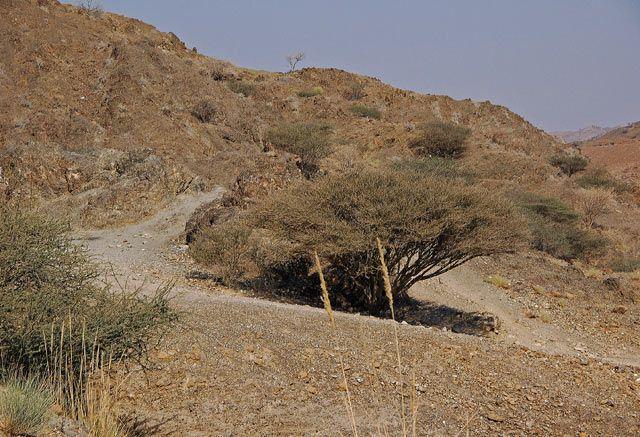 Zdjęcia: LAHBAB, oblicza pustyni, ZJEDNOCZONE EMIRATY ARABSKIE