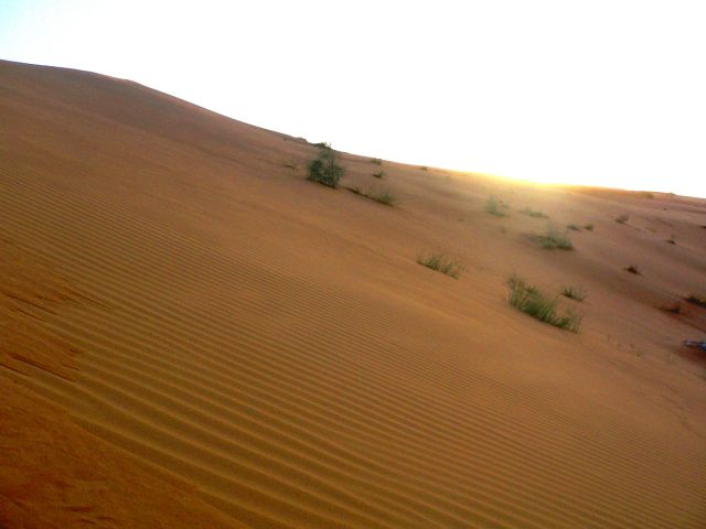 Zdjęcia: gdzieś pomiędzy Abu Dhabi i Al Ain, Zatoka Perska, pustynia, ZJEDNOCZONE EMIRATY ARABSKIE