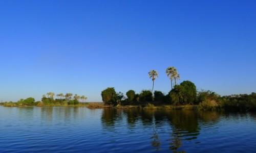 Zdjęcie ZIMBABWE / Pół.  zachodnie Zimbabwe / Rzeka Zambezi/ na łodzi / Egzotyczny brzeg Zambezi