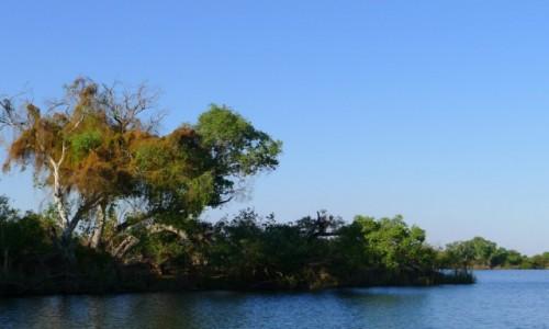 Zdjecie ZIMBABWE / Pół.  zachodnie Zimbabwe / Rzeka Zambezi/ na łodzi / Dzika Zambezi