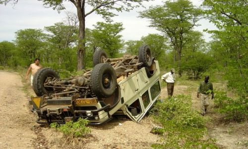 Zdjęcie ZIMBABWE / Mana Pools / droga przez busz / shit happens
