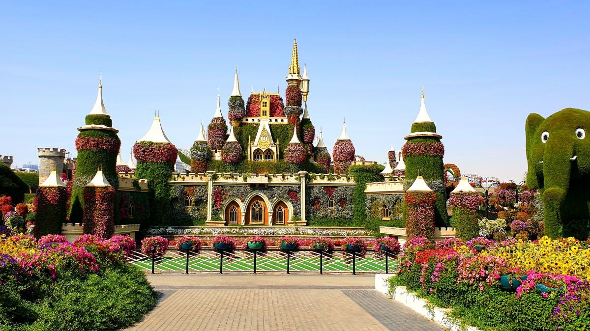 Zdjęcia: Dubaj, Dubaj, Miracle Garden, ZJEDNOCZONE EMIRATY ARABSKIE