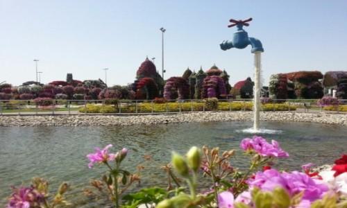 Zdjecie ZJEDNOCZONE EMIRATY ARABSKIE / Emirat Dubaj / Dubaj / Miracle Garden. Dubaj