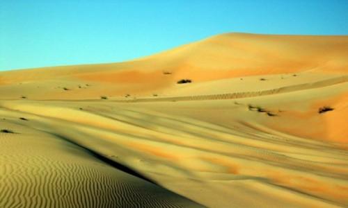 Zdjecie ZJEDNOCZONE EMIRATY ARABSKIE / Emirat Abu Zabi / Liwa / Pustynia Bu Fallah