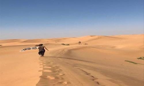 Zdjecie ZJEDNOCZONE EMIRATY ARABSKIE / Dubai  / Dubai  / Szukając wielbłądów