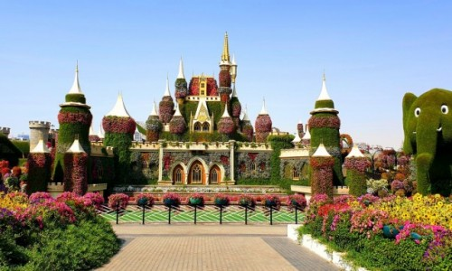 ZJEDNOCZONE EMIRATY ARABSKIE / Dubaj / Dubaj / Miracle Garden