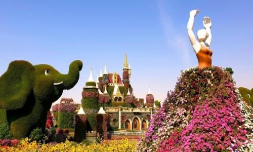 Zdjecie ZJEDNOCZONE EMIRATY ARABSKIE / Dubaj / Dubaj / Miracle Garden