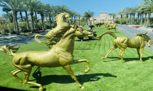 ZJEDNOCZONE EMIRATY ARABSKIE / - / Dubai  / Konie Arabskie